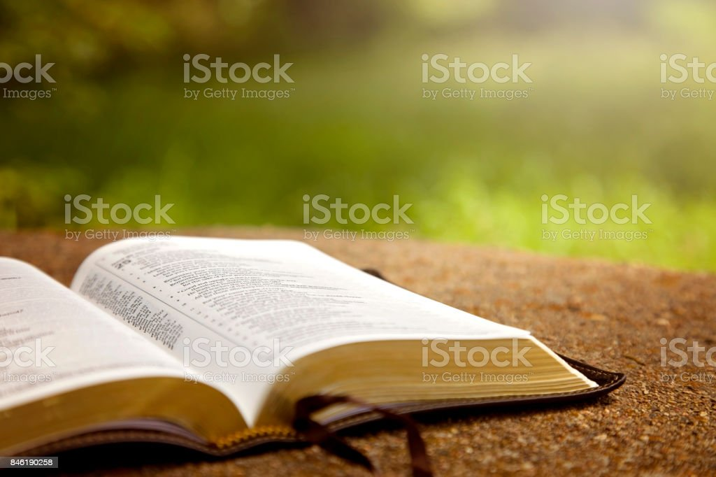 An Opened Bible on a Table in a Green Garden - foto stock