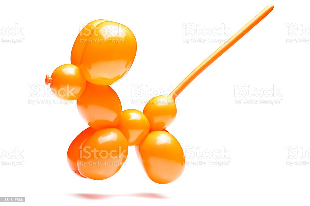 An orange dog with a long tail made out of a balloon stock photo
