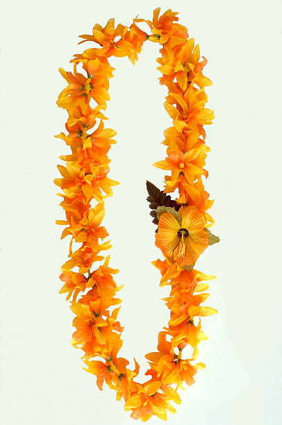 An orange Hawaiian lei on a white background stock photo