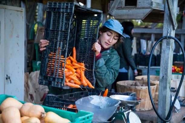 Ein Bio-Bauer an einem Stand auf einem Bauernhof im Freien – Foto