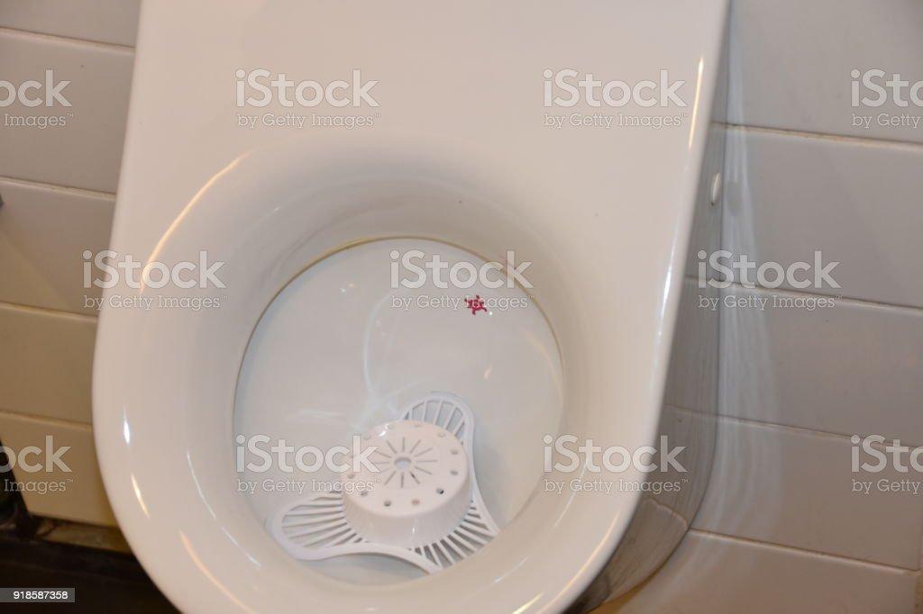 Eine Originelle Idee Zur Toilette Wollen Männer Machen ...