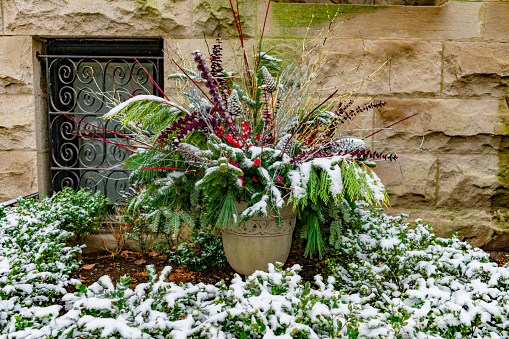 An Outdoor Holiday Planter covered with Snow