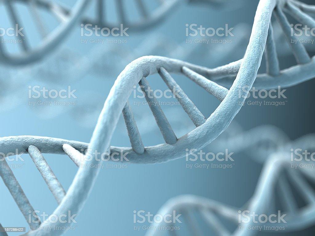 DNA-Stränge – Foto