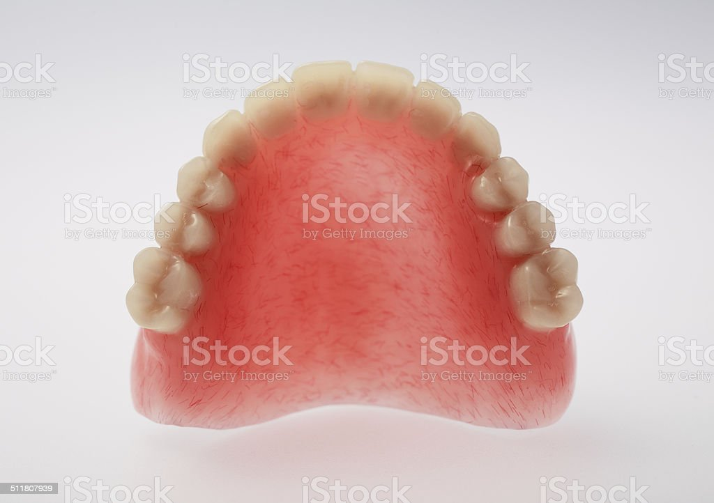 An upper denture on white background stock photo