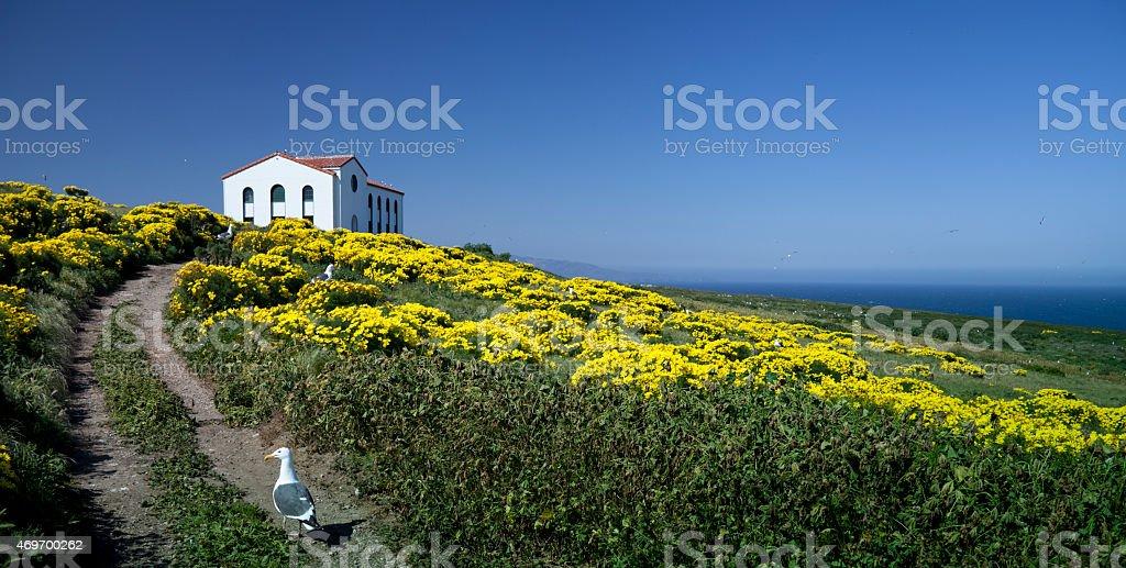 Anacapa Island, CA , Pump House & Wild Flowers stock photo