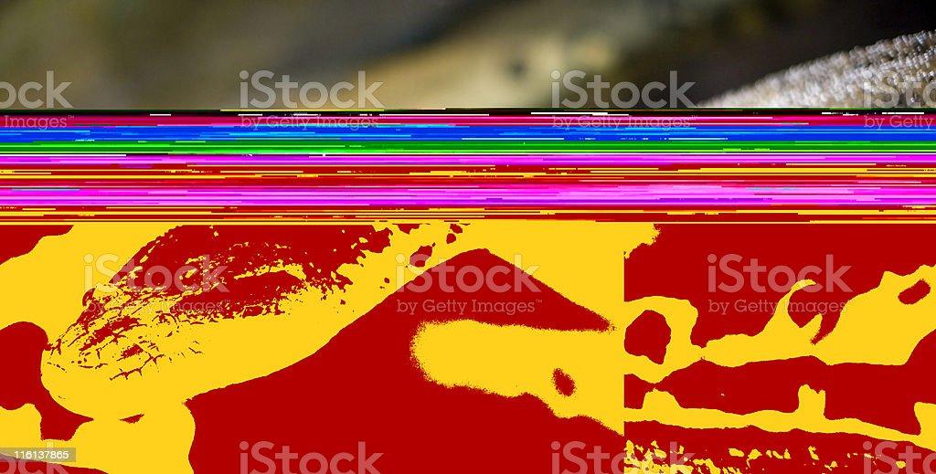 Anaconda stock photo