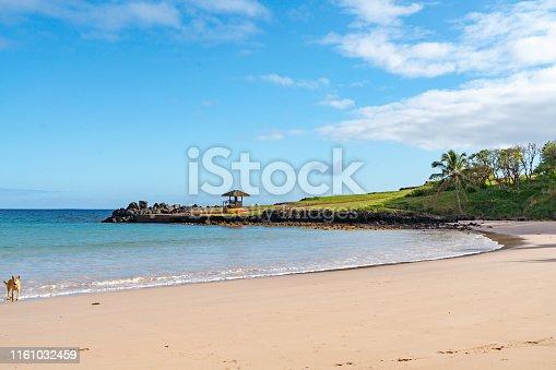 istock Anakena,Ahu Ature Huki and Ahu Nau Nau, Easter Island, Chile 1161032459