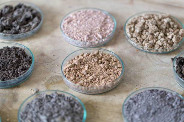 Analysis of soil samples in laboratory. stock photo