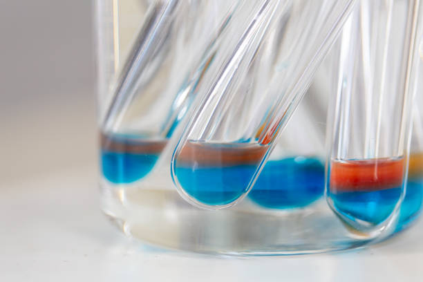 analysis starch for study chemical composition in laboratory. - campione scientifico foto e immagini stock