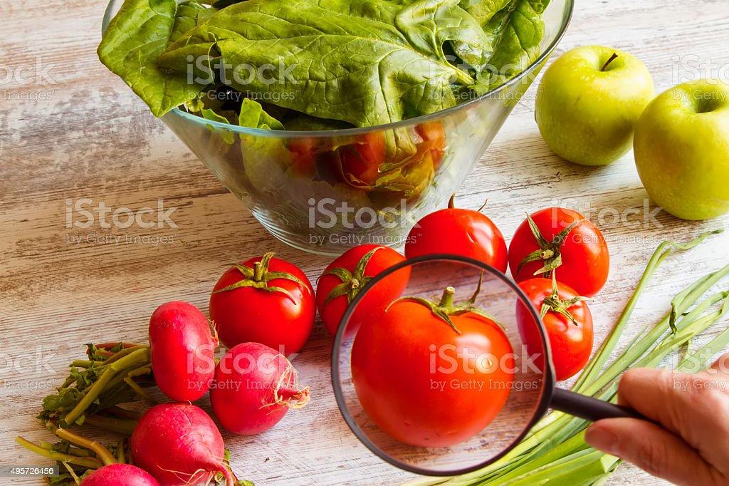 Analyzing food stock photo