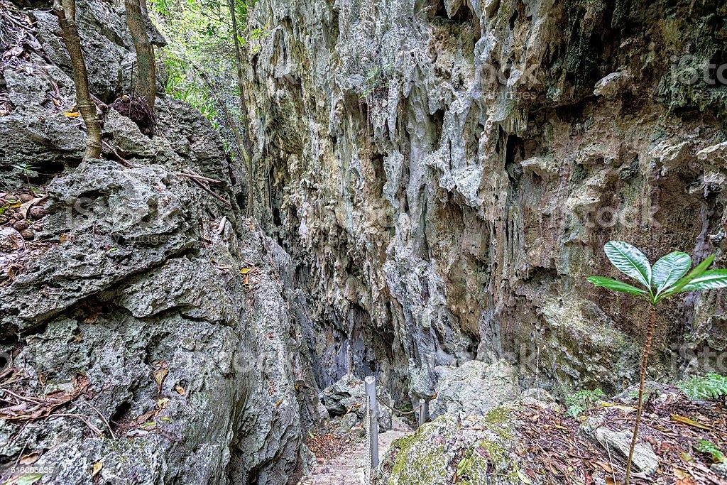 Anapala Chasm stock photo