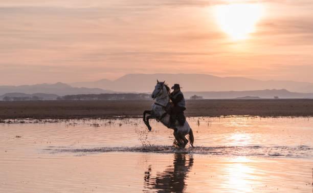 Anatolian cowboy riding horse by sunset picture id913446014?b=1&k=6&m=913446014&s=612x612&w=0&h=h6tstnhfv10ckz0frscas9j2lx6j0gahyskawrfo kk=