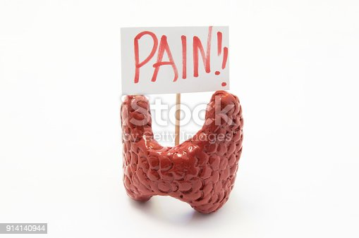 istock Anatomical model of thyroid gland with placard with inscription pain is on white background. Concept photo of pain, pain symptoms and syndromes in thyroid gland in various diseases and pathologies 914140944