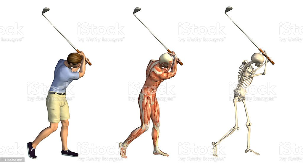 Anatomical Overlays: Golf Swing stock photo