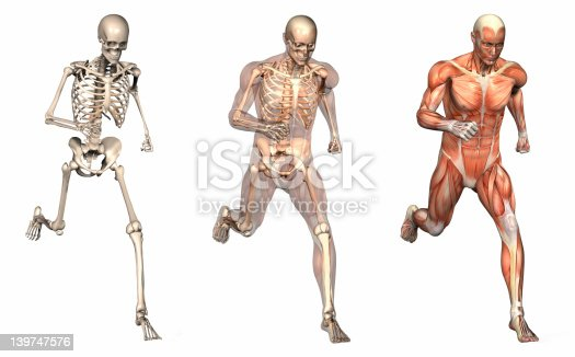 istock Anatomical Overlays - Man Running Front View 139747576