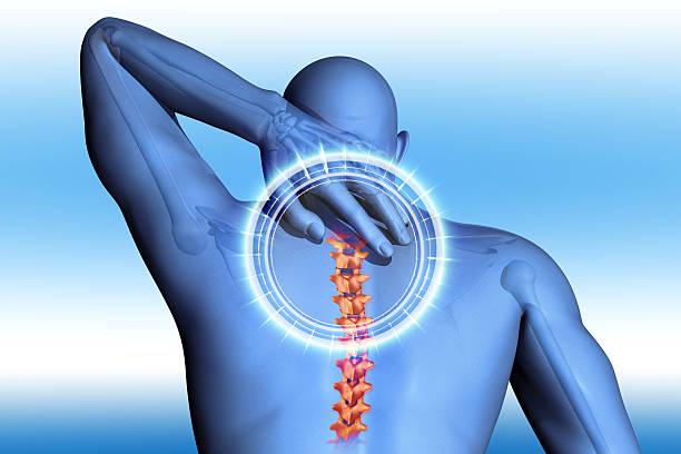 concept anatomique les douleurs du dos - sternum photos et images de collection