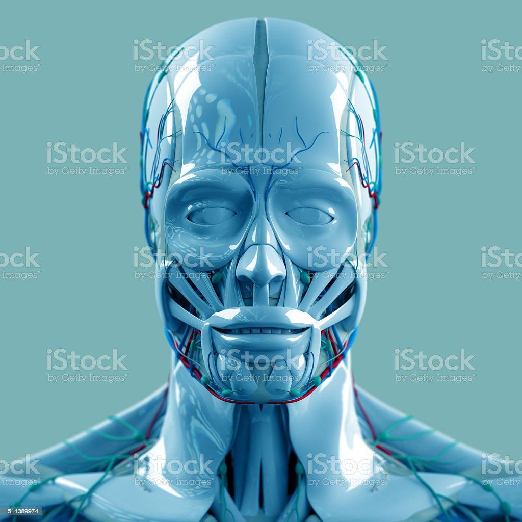 Fotografía de Anatomía De Tecnología Futurista Exploración Cabeza Y ...