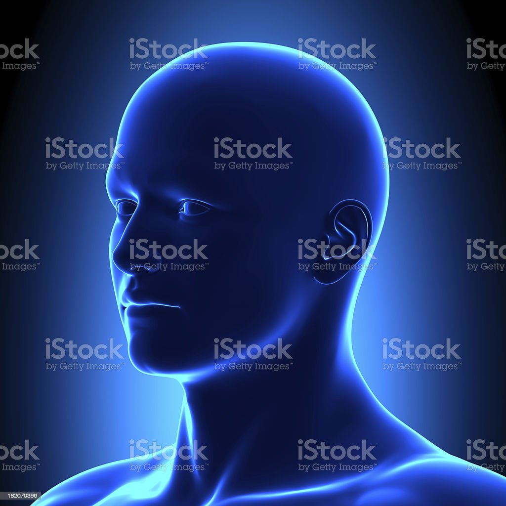 Anatomy Head Iso View Detail - Blue concept stock photo