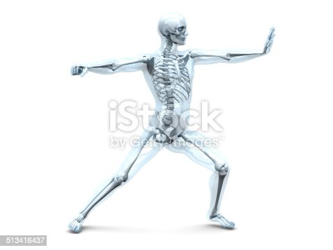 496193187istockphoto Anatomy -  Martial Arts 513416437