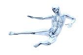 istock Anatomy -  Martial Arts 513416537