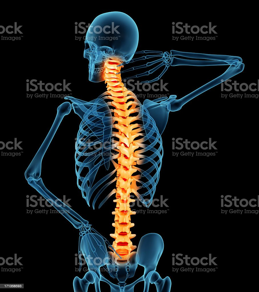 Anatomy Of A Man Showing Back Pain Stock Photo More Pictures Of