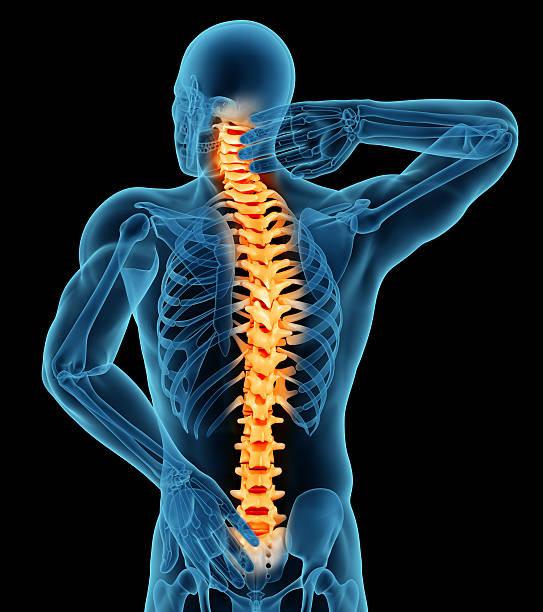 Anatomía de un hombre mostrando dolor de espalda - foto de stock