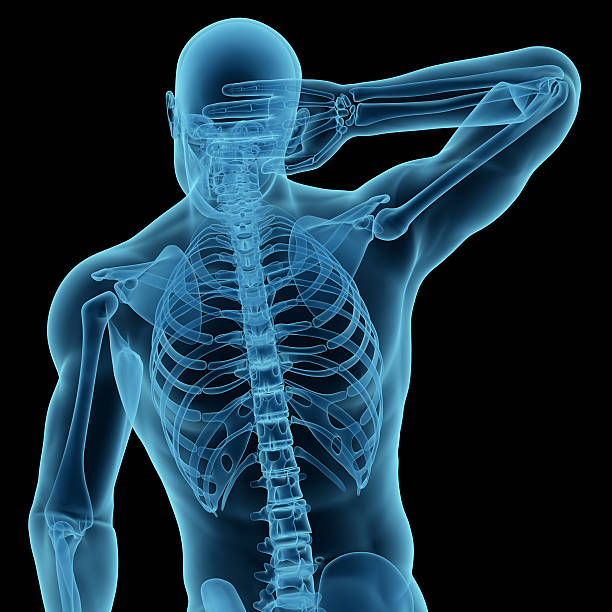 Royalty Free Silhouette Of Anatomy Male Back Neck Pain Blue Pictures ...