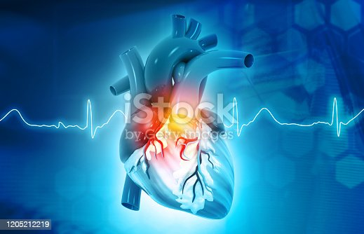 Anatomy of Human Heart on science background. 3d render