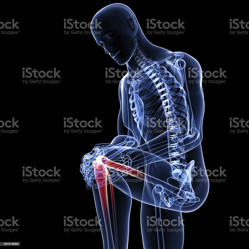 Anatomy Of Male Knee Pain Stock Photo & More Pictures of Anatomy ...
