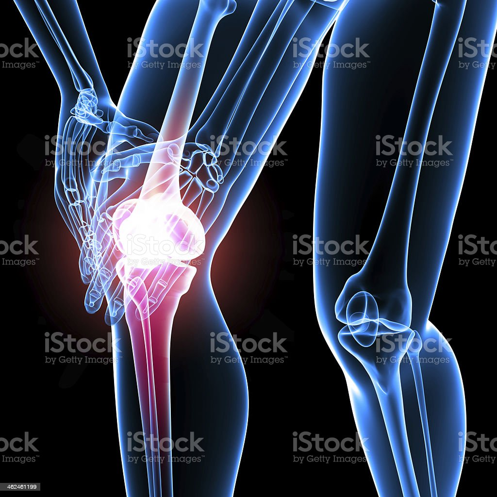 Anatomy Of Male Knee Pain Stock Photo More Pictures Of Anatomy