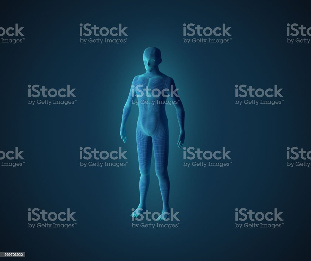 Anatomy of male muscular system. Blue human wireframe hologram. 3d illustration stock photo
