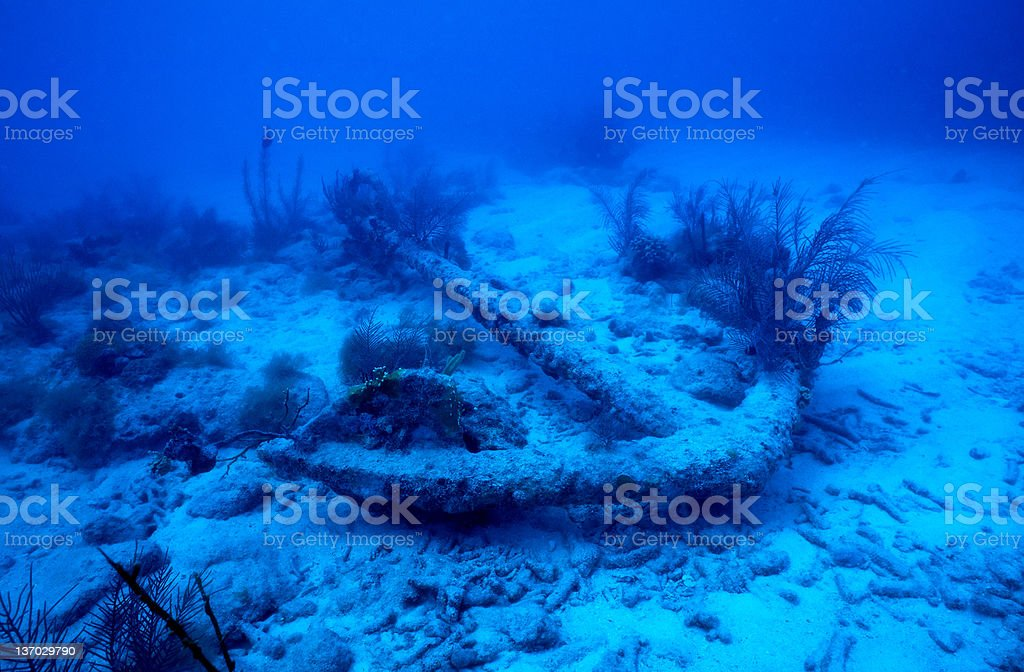 Anchor from shipwreck royalty-free stock photo