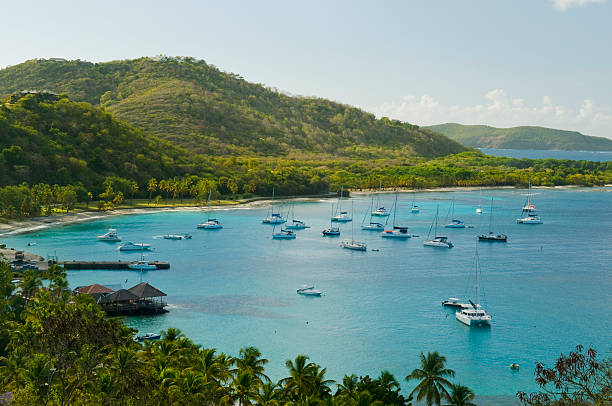 Anchoring ships in tropical bay