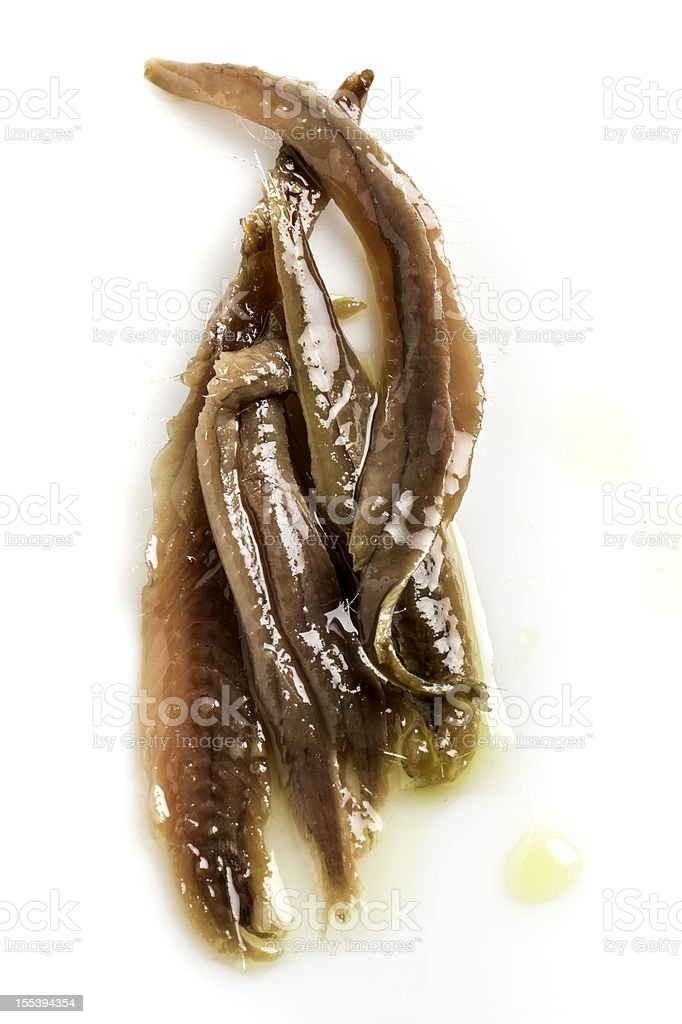 Anchovies in Olive Oil stock photo