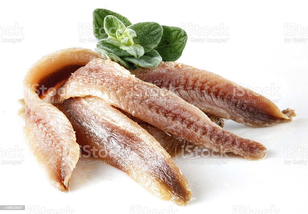 anchovies on white with oregano stock photo