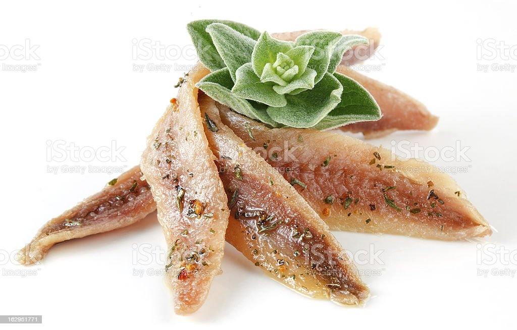 anchovies on white with spice and oregano stock photo