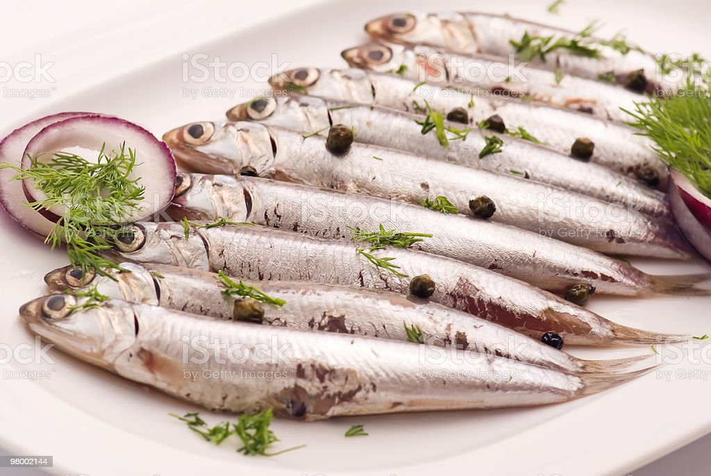 Anchovies royalty-free stock photo
