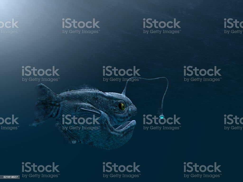 ancient angler fish stock photo