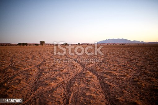 Ancient Antelope Paths tracks in the desert sand towards a waterhole in a arid Landscape Namib Rand Namibia Africa