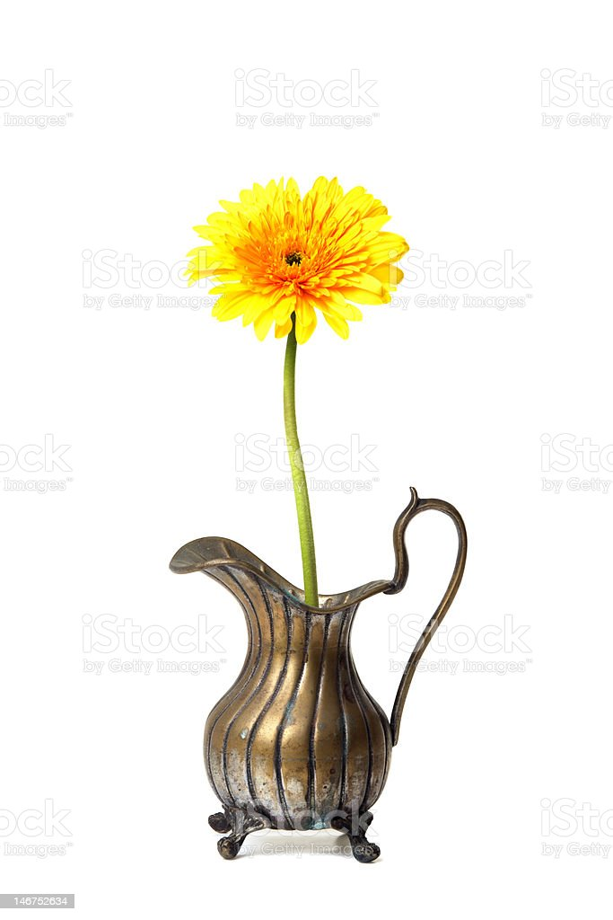 Ancient brass ewer with flower  on white royalty-free stock photo