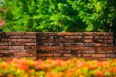 brick,old,tree,bush,flower,blurred,background