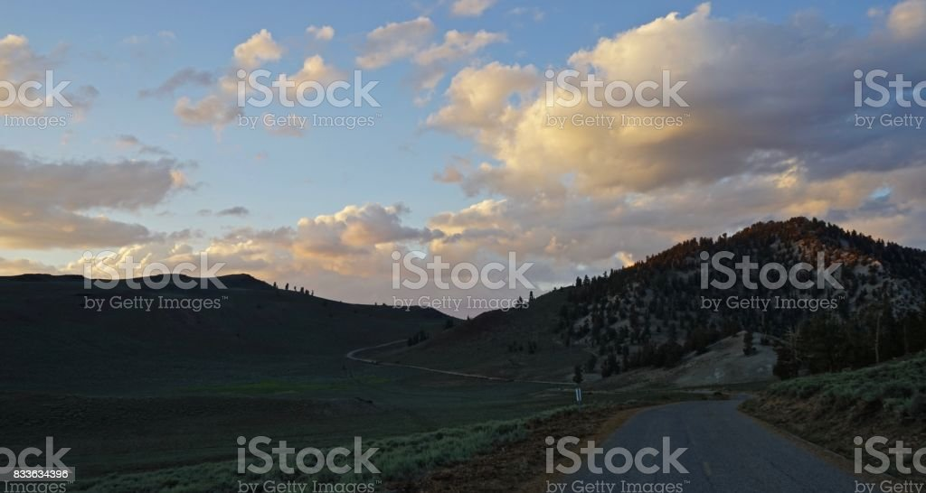 Ancient Bristlecone Pine Highway stock photo