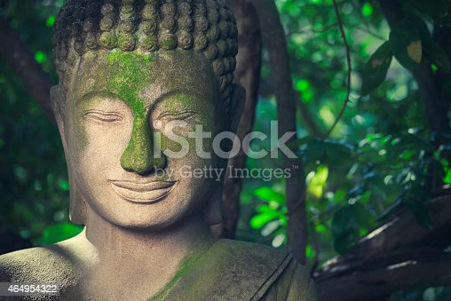 An old and partly overgrown Buddha statue stands in a tropical nature environment.