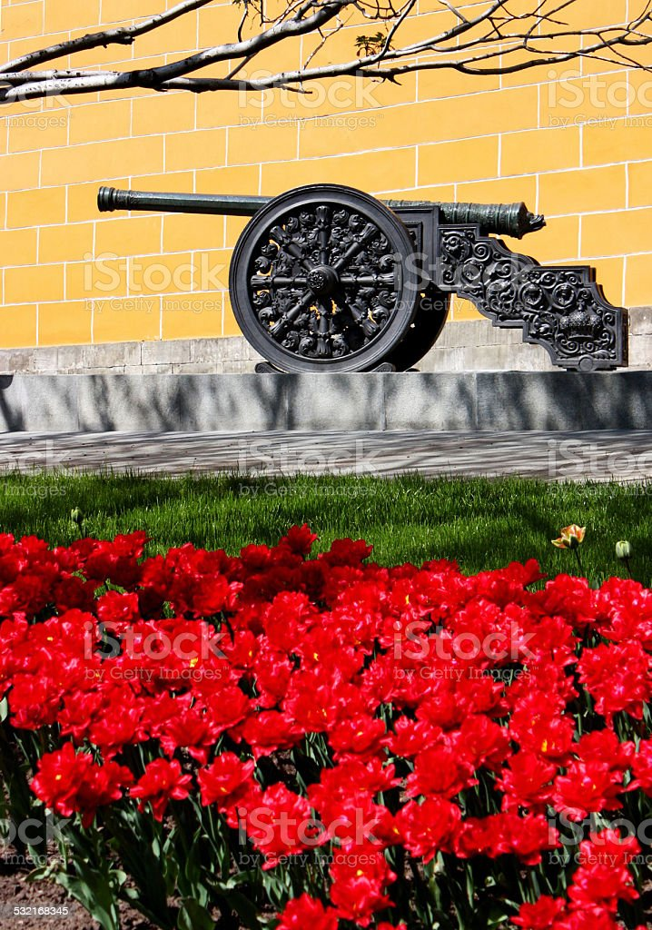 Ancient Cannon. stock photo