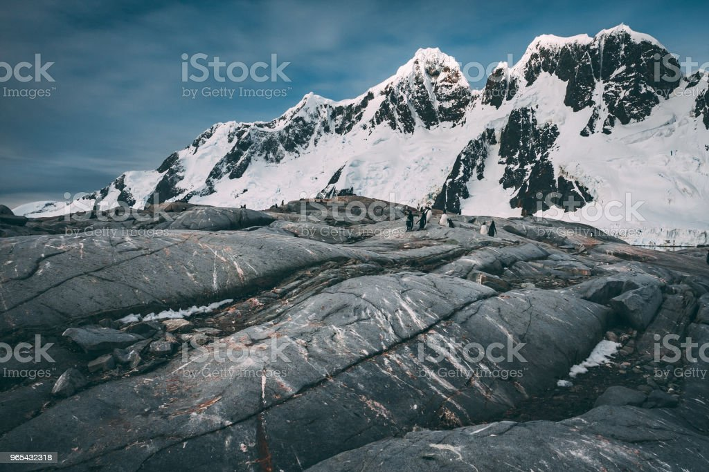 Ancient cool lava flow. Antarctic mountains royalty-free stock photo
