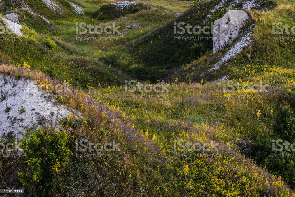 Ancient Cretaceous overgrown ravine with outcrops of chalk. Territory natural archaeological monument - Krapivenskoye ancient settlement, Belgorod region, Russia. stock photo