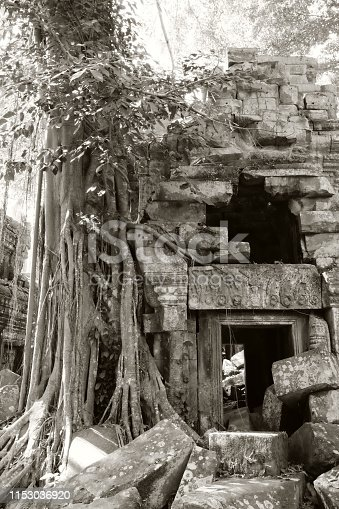 istock Ancient dilapidated buildings in the rainforest. Trees grow near abandoned buildings of the Khmer Empire. 1153036920
