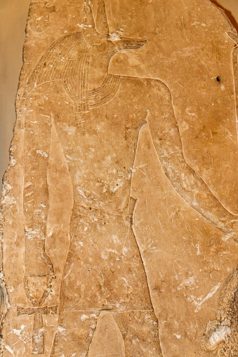Ancient Egyptian god Anubis depicted with the head of a jackal, Anubis is the god of mummification