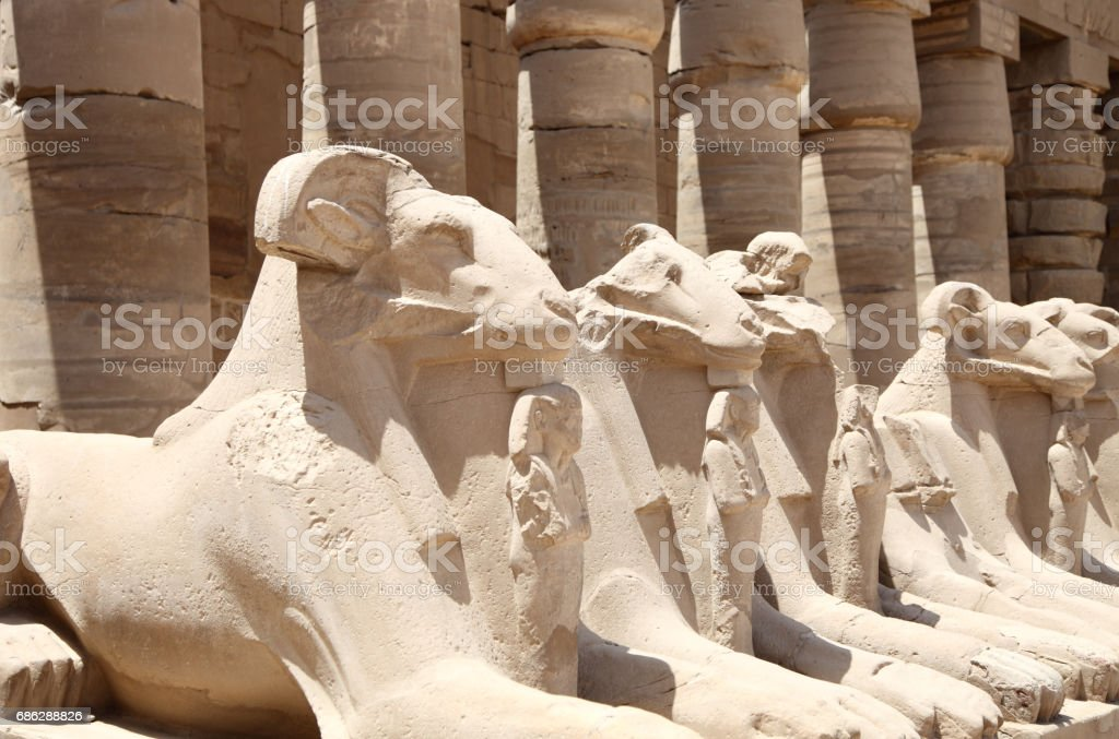 Ancient Egyptian statues stock photo