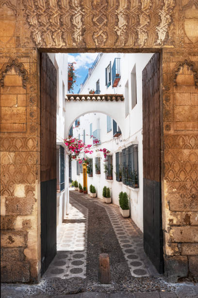Ancient gate and street in Cordoba, Spain. Ancient gate and street in Cordoba, Spain . cordoba spain stock pictures, royalty-free photos & images